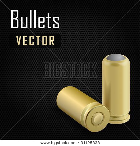 Vector illustration of pair bullets on black background