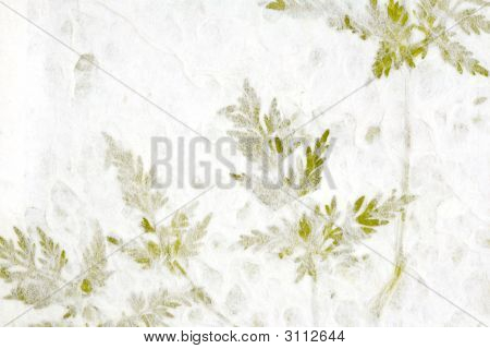 Greenery In Handmade Paper
