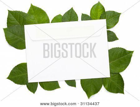 Eco Letter On White