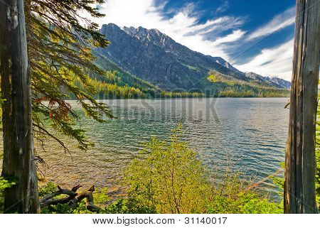 Jackson Lake And Grant Tetons