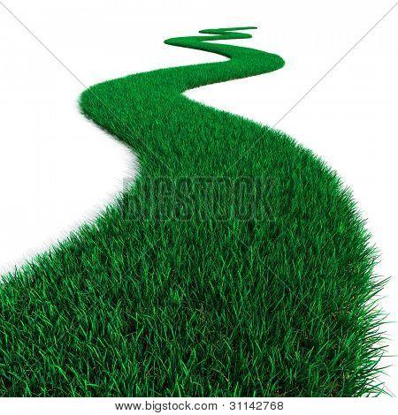 Camino de hierba verde