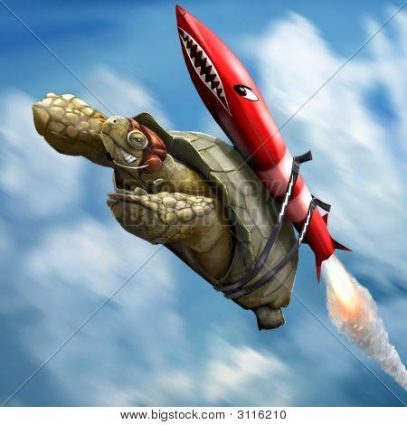 Rocketturtle