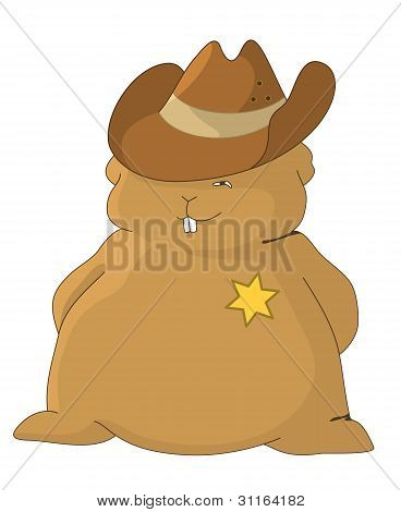 Sheriff pillow