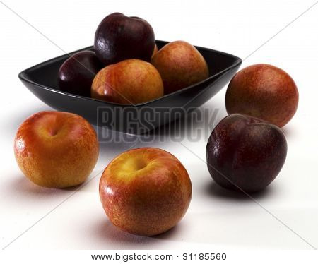 Plumbs and Pluots
