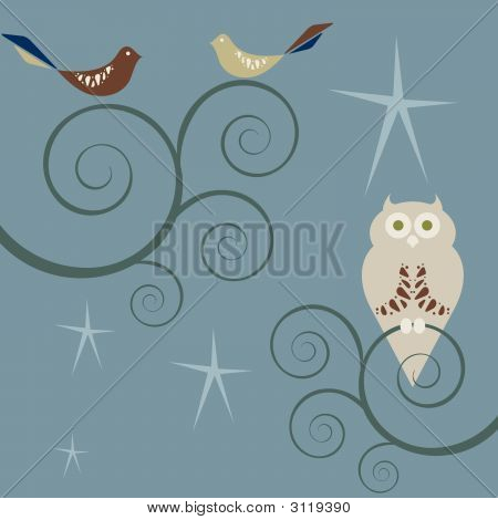 Retro Style Birds And Owls At Night