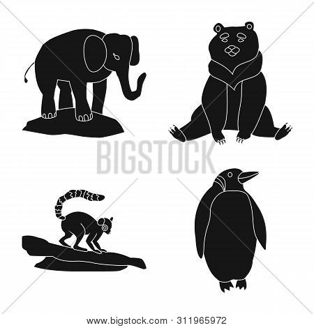 poster of Vector Illustration Of Fauna And Entertainment Icon. Collection Of Fauna And Park Stock Vector Illus