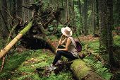 Woman In Forest Nature In Vacation. Woman In Nature. Green Forest Nature. Vacation. Natural Environm poster