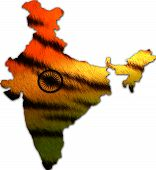 India in tiger skin pattern