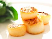 stock photo of scallops  - close up of pan seared sea scallops - JPG