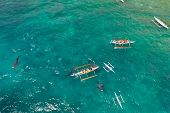 Tourists Are Watching Whale Sharks In The Town Of Oslob, Philippines, Aerial View. Summer And Travel poster