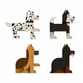 Pedigree Dogs Sits And Stand. Vector Illustration. Flat Icons Set. poster