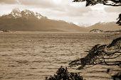 image of tierra  - Tierra del Fuego National Park is a national park on the Argentine part of the island of Tierra del Fuego in the ecoregion of Patagonic Forest and Altos Andes - JPG