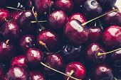 Close Up Of Pile Of Ripe Cherries With Stalks. Large Collection Of Fresh Red Ripe Cherry Background  poster
