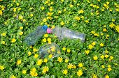 Discarded Plastic Bottles And Packaging In The Grass With Yellow Flowers poster