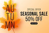 Autumn Sale Banner. Seasonal Background With Fall Leaves. Maple Leaf With Black Text. Start Of A Sea poster