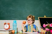 Healthy Dinner In School. Delicious Food For Lunch. Primary School Kid Eat Lunch In Class. Little Pu poster