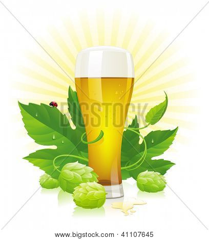 Glass of beer, hop  cones and leaves