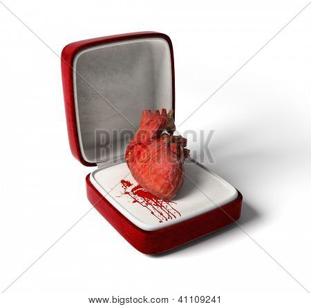 anatomical heart as a love gift (3D concept)