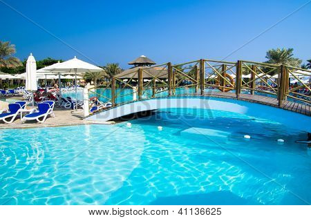 swimming pool with coconut tree and umbrella
