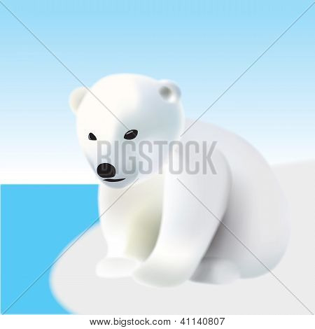 Polar Bear Youngling On The Iceberg