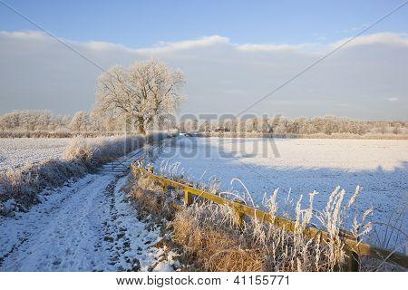 Winter Farm Track