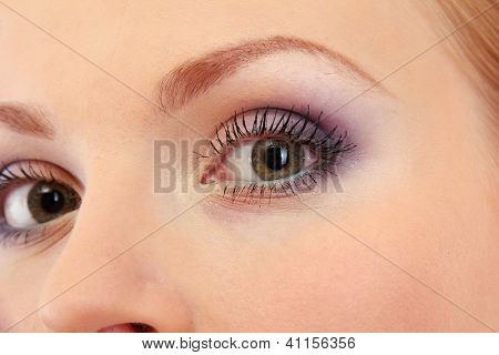 beautiful female eyes with bright winter make-up