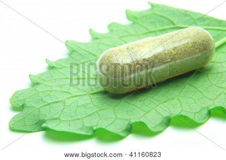 Herbal capsule on melisa leaf