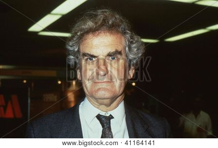 BRIGHTON, ENGLAND - SEPTEMBER 14: Adrian Slade, Vice President of the Liberal Democrat party, attends the party conference on September 14, 1989 in Brighton, Sussex.