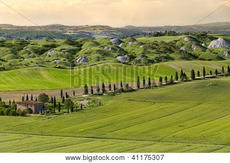 Farmhouse and alley in near Siena, Crete Senesi, Tuscany, Italy