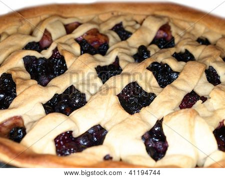 Fresh Dark Blue Berry Pie, Covered With Shortcrust Pastry