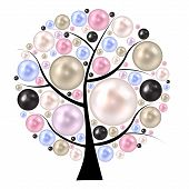 stock photo of mother-of-pearl  - Beauty pearl  on tree - JPG