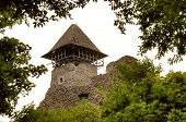 pic of zakarpattia  - Nevitsky Castle ruins Kamyanitsa village 12 km north of Uzhgorod Zakarpattia Oblast Ukraine Built in 13th century - JPG