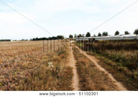 road thorugh a field