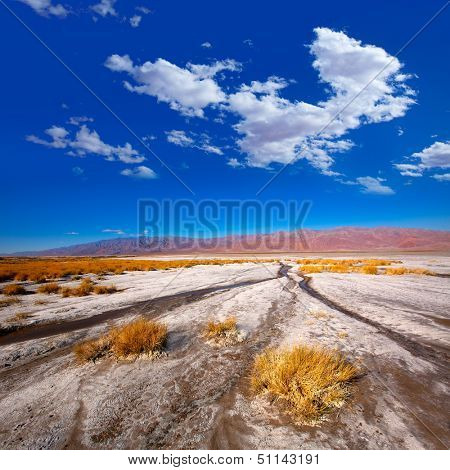 Death Valley National Park California Badwater salt soil desert
