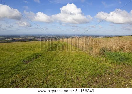 Hillside Pasture