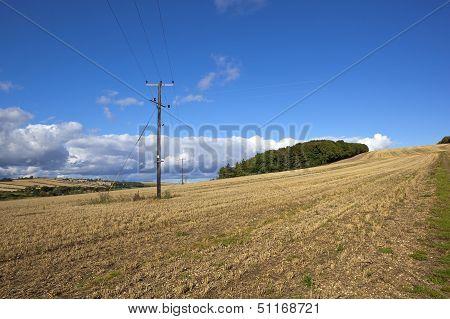 Scenic Agricultural Landscape