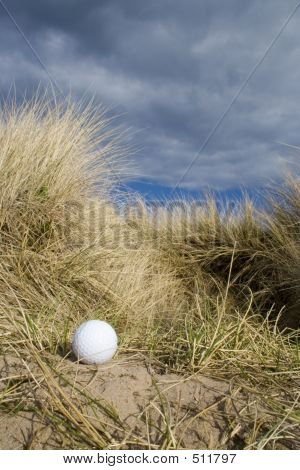 Golf Ball In Dunes