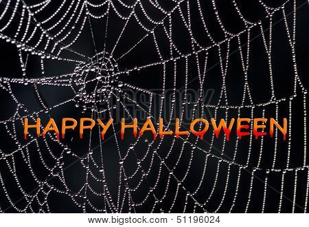 Happy Halloween - creepy and spooky for your holiday project. The words over a spider web appear to be dripping blood.