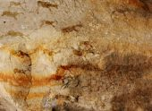 pic of cave-dweller  - Wall cave with drawings of the primitive person  - JPG