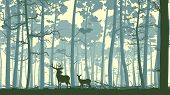 stock photo of deer  - Vector abstract illustration of wild deer in forest with trunks of trees - JPG