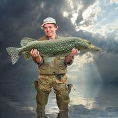 stock photo of musky  - The fisherman with big fish  - JPG