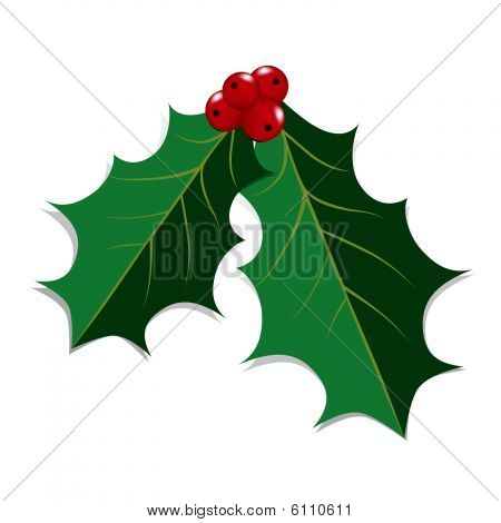 Holly Leaves Christmas Background