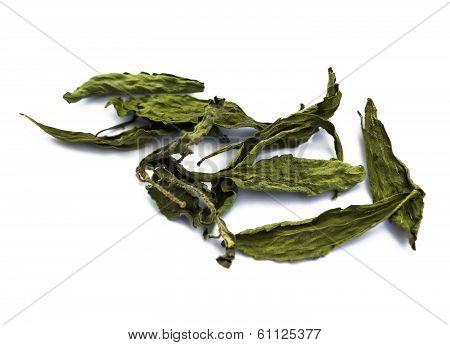 Stevia Rebaudiana Bertoni, Sweet Leaf Sugar Substitute
