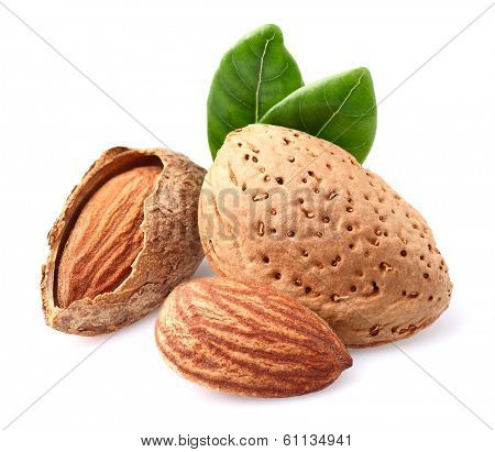 Dried almonds with leaf