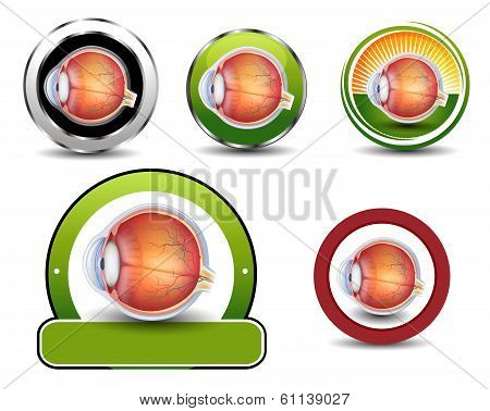 Ophthalmology Symbols Collection