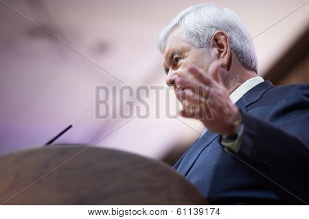NATIONAL HARBOR, MD - MARCH 8, 2014: Former Presidential candidate and Speaker of the U.S. House of Representatives Newt Gingrich speaks at the Conservative Political Action Conference (CPAC).