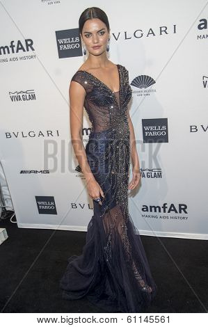 NEW YORK-FEB 5: Model Barbara Fialho attends the 2014 amfAR New York Gala at Cipriani Wall Street on February 5, 2014 in New York City.