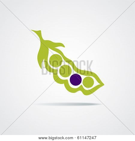 Vector pea pod isolated on a white background