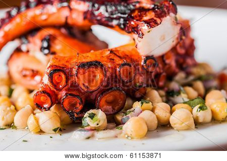 Cooked Octopus Plate With Chickpeas