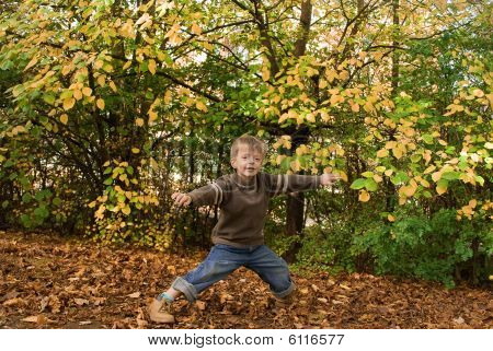 Boy in Autumn Leaves